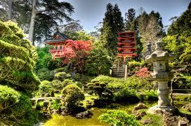 japanese tea garden rebecca white
