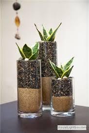 Indoor Plant Arrangements Best 25 Contemporary Terrariums Ideas On Pinterest Target Home