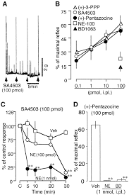 metabotropic neurosteroid ς receptor involved in stimulation of