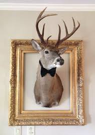 home design 1000 ideas about faux deer head on pinterest heads