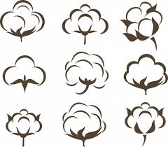 cotton flowers cotton flowers icons collection various flat sketch vectors stock