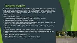 body systems used in tennis by cameron campisi
