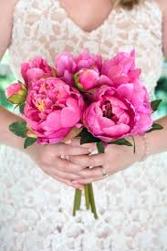 peonies wholesale hot pink peonies arrangement in vase wholesale emsg info