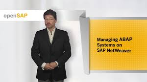 managing abap systems on sap netweaver mercedes fernandez and