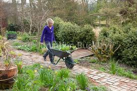 Carol Klein Life In A Cottage Garden - carol klein it u0027s a perfect time of year to improve the access to