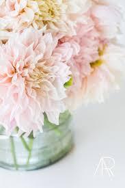 Pink Peonies Nursery Alyssa Rosenheck Photography
