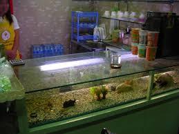 file bar counter with aquarium jpg wikimedia commons