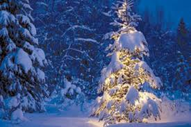 8th annual tree lighting ceremony