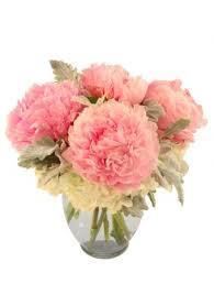 houston florist sweet as pie pink peonies in houston tx willowbrook florist
