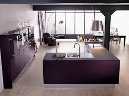 idee cuisine design cuisine couleur aubergine inspirations violettes en 71 idées
