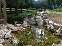 Backyard Pond Landscaping Ideas Backyard Pond Ideas For Your Landscape Lexington Kentucky Ky