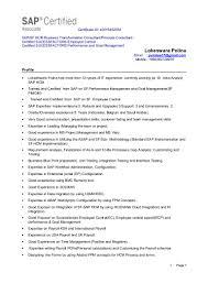 Sap Abap Resume Format Robin Hood Case Analysis Essay Free Essay Writing Jobs Online