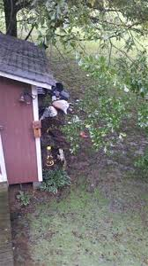 How To Cut Weeds In Backyard Landscaping What Do Your Neighbors Do That Drives You Crazy