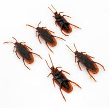 Cockroach Halloween Costume Quality Cockroaches Scary Buy Cheap Cockroaches Scary Lots