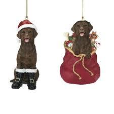 santa s best friend chocolate labrador ornament the