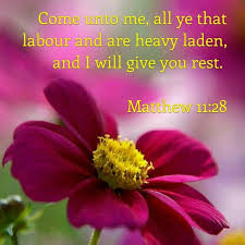 2918 best verse of the day images on pinterest bible scriptures