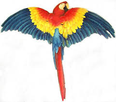 parrot home decor brightly painted parrot metal wall hanging tropical home decor