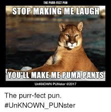 Puma Pants Meme - the purr fect pun stop making me laugh o make you ll make me puma