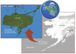 uncovering secrets mammoth island discovermagazine