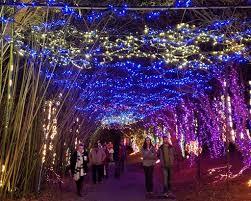 hopeland gardens christmas lights 50 best christmas light displays in the u s cheapism