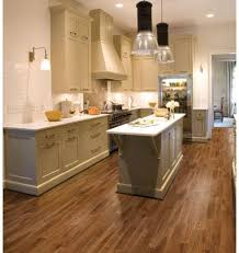 Kitchen Vinyl Flooring by 38 Best Vinyl Images On Pinterest Vinyl Flooring Laminate