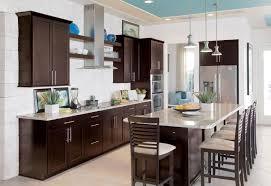 Espresso Cabinets Kitchen Maple Espresso Kitchen Cabinets U Desjar Interior Of