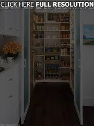 cabinet storage solutions for the kitchen kitchen storage ideas