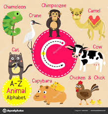 cute children zoo alphabet c letter tracing of funny animal