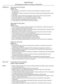 resume templates accountant 2016 subtitles softwares track r assistant manager resume sles velvet jobs