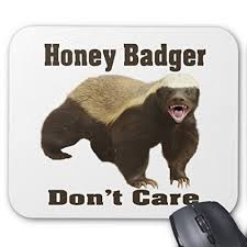 Meme Mouse Pad - maliyna honey badger don t care is a cute meme mouse pad 9 7 inch