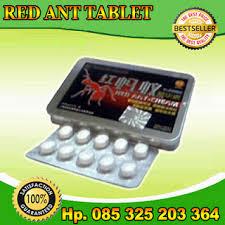 obat kuat herbal red ant tablets africa obat kuat semut merah