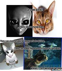 Cat Alien Meme - cats are aliens by recyclebin meme center