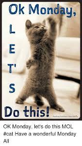 Lets Do This Meme - ok monday do this hamburg veterinary clinic jmbge ok monday let s
