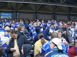 Eishalle Bad Aibling Dresdner Eislöwen U2013 Wikipedia