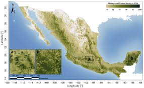 Mexico Map by Aboveground Forest Carbon Stocks In Mexico U2013 Woods Hole Research