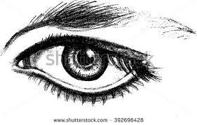 photo sketch open eye pencil sketch autotraced realistic stock vector 392696428