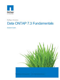 data ontap 7 3 fundamentals student guide command line interface