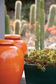 Succulent And Cacti Pictures Gallery Garden Design Keith Taylor Staging Plants Is His Pottery Http Potterybykitoi