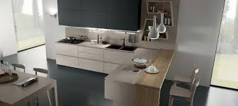 Contemporary Kitchen Contemporary Kitchen Laminate L Shaped Vega Torchetti Cucine