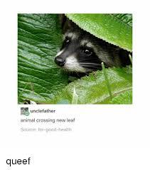 Animal Crossing New Leaf Memes - 25 best memes about animal crossing new leaf animal crossing