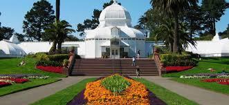 Golden Gate Botanical Garden Navigating San Francisco A Golden Gate Park Survival Guide
