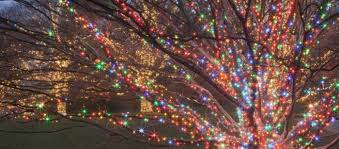 christmas lights in pa take this road trip to 10 christmas light displays in pennsylvania