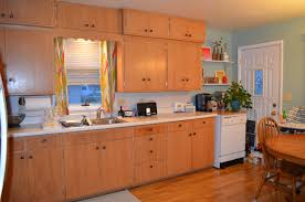 Mobile Kitchen Cabinet Restain Kitchen Cabinets Rixen It Up