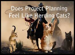 Herding Cats Meme - be like herding cats to be very unwieldy or unmanageable to be