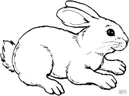 resultado de imagem para desenho coelho artesanato pinterest