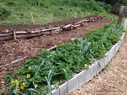 How To Landscape A Sloped Backyard - here u0027s a quick way to terrace a hill tenth acre farm