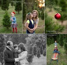 jordan lake christmas tree farm morgan henderson photography