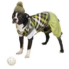Golf Halloween Costumes Casual Canine Putter Pup Golf Dog Halloween Costume Pet Costumes