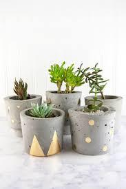 Concrete Succulent Planter Make Concrete And Gold Diy Plant Pots