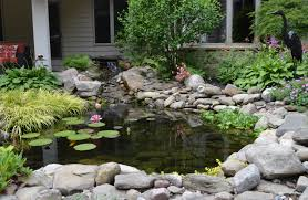water features ponds waterfalls t o u0027donnell landscaping